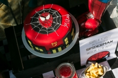 superheroe-party-hiphiphurray-44